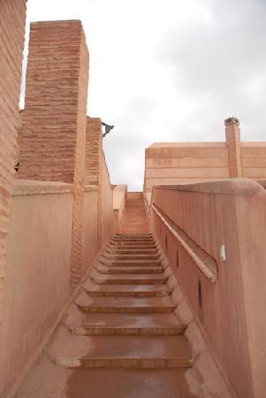 Villa Malekis: villa Joly Amelkis -Marrakech