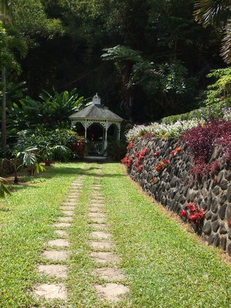 Tropical Gardens of Maui
