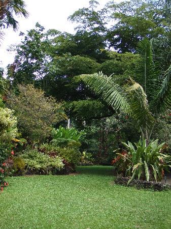 Tropical Gardens of Maui: grounds