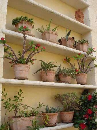 أوناس هوتل: la terrasse