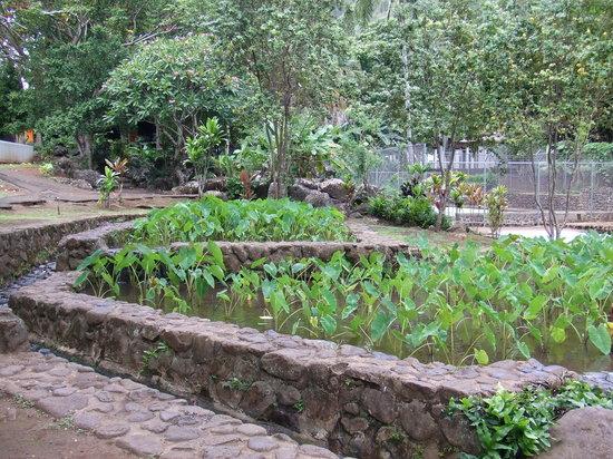 Kepaniwai Park & Heritage Gardens