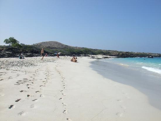Manini'owali Beach (Kua Bay): Kua Bay
