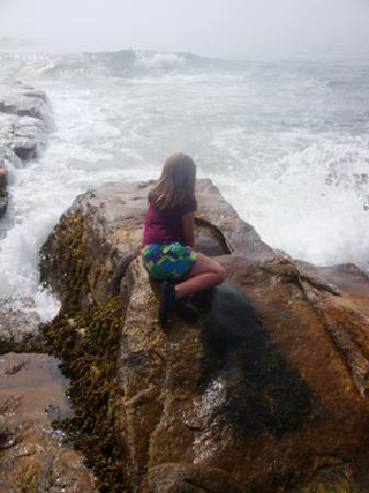 Seawall Motel: Our little mermaid is mesmerized by the crashing waves.