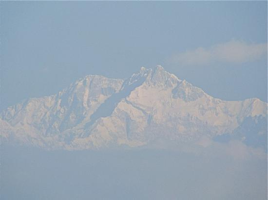 Glenburn Tea Estate: Kanchenjunga from Glenburn