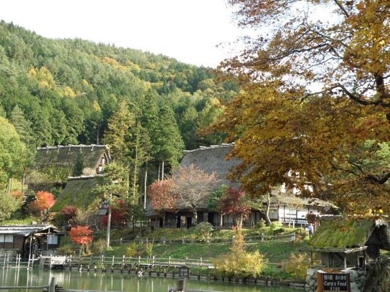 Takayama, Japón: A very stunning view for everybody.