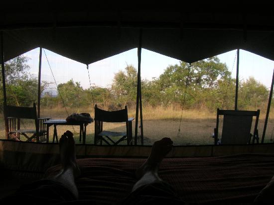 Mara Siria Camp: Blick aus dem Zelt bei Tag