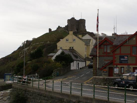 Criccieth, UK: the castle from the promenade