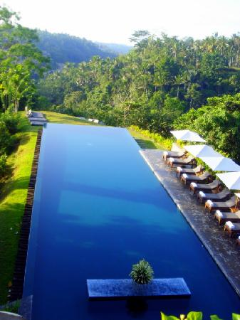 la superbe piscine d bordement foto di alila ubud. Black Bedroom Furniture Sets. Home Design Ideas
