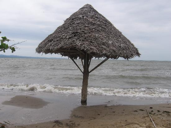Amatique Bay Resort & Marina: Beach