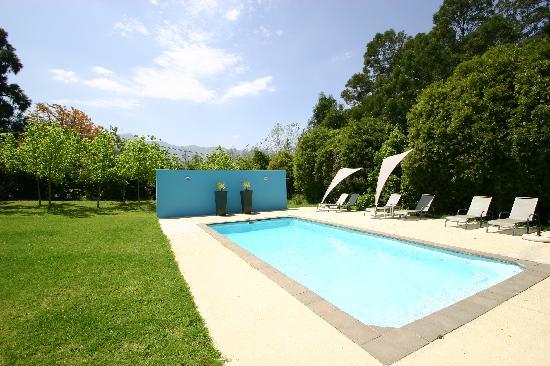 Bloomestate: pool area