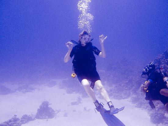 Iberotel Palace: Diving