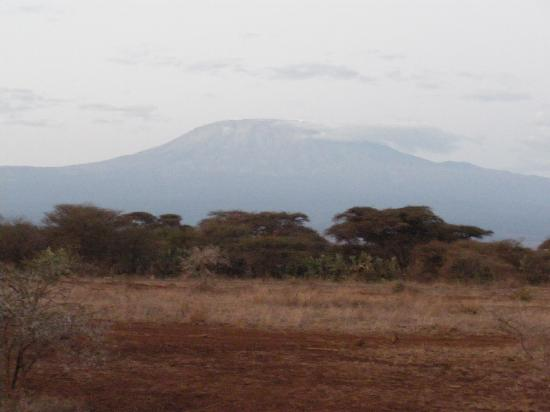 Amboseli Sopa Lodge: View of the mountain from the lodge