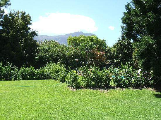 Constantia White Lodge: Hotel garden with views of Table Mountain