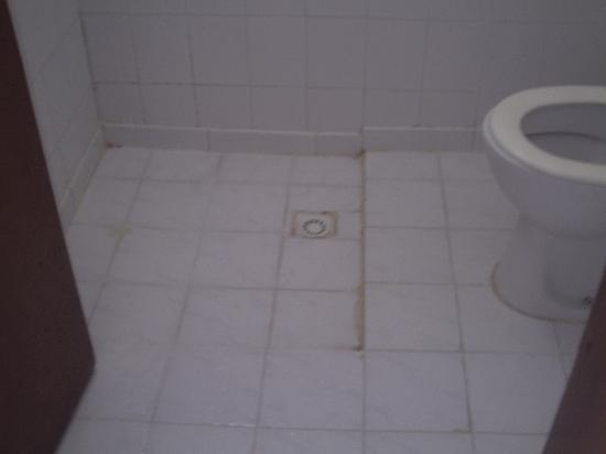 Baccara Hotel: shower to toilet.