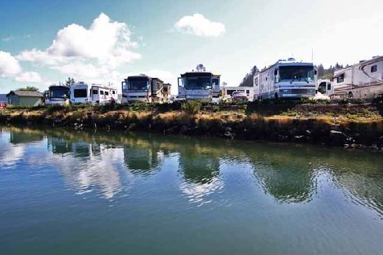 McKinley's Marina & RV Park: Direct waterfont RV sites