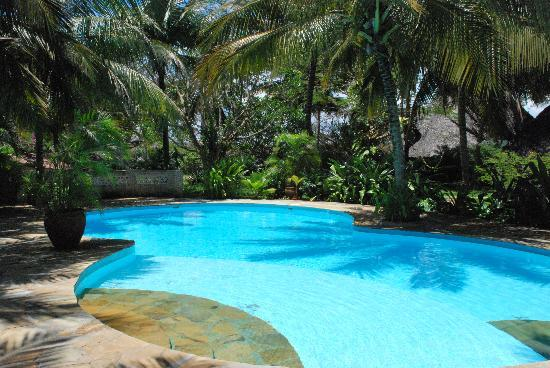 Shambani Cottages: Pool @ Shambani