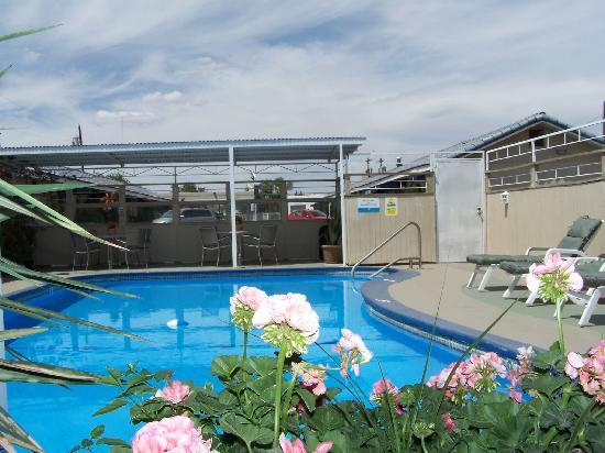 Monterey Motel: swimming pool