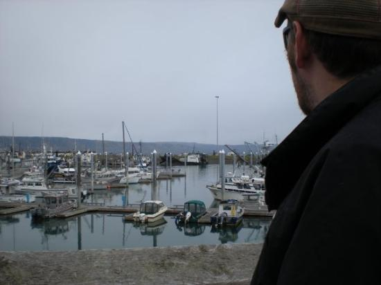 Homer (AK) United States  city pictures gallery : Salty Dawg Saloon Homer, AK, United States Foto di Homer, Alaska ...