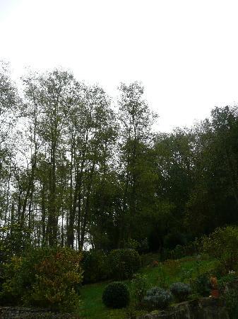 Val En Sel : forest