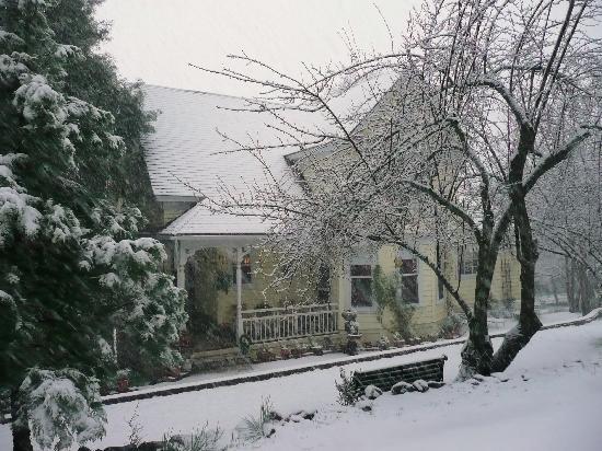 The Harlan House: Harlan House B&B - Snow Falling