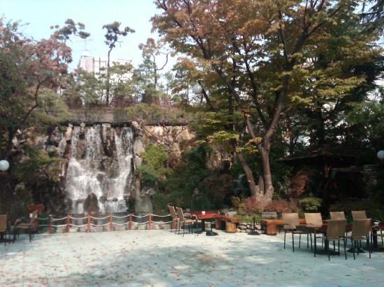 Samwon Garden Main Store: The garden