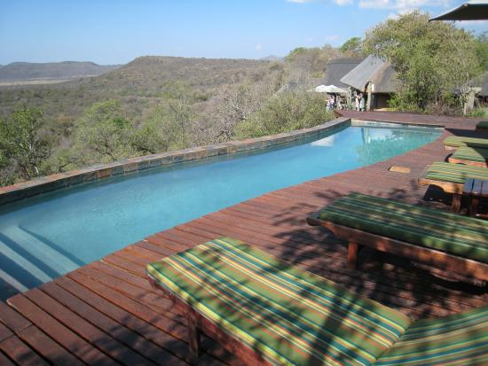 Photo of Buffalo Ridge Lodge Madikwe Game Reserve