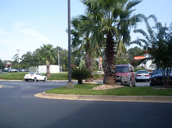Vista Inn & Suites - Warner Robins: view from looking out front