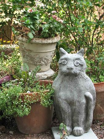 27 Blake Street Bed & Breakfast: Kitty Garden