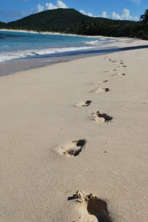 Flamenco Beach: Playa Flamenco
