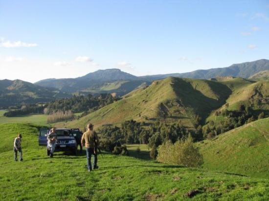 Пальмерстон-Норт, Новая Зеландия: Turkey hunting.