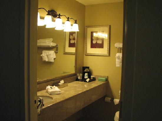 Country Inn & Suites By Carlson, Covington, LA: Bathroom