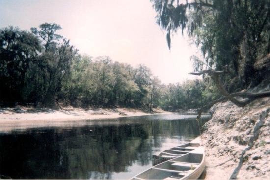 Live Oak, FL: Suwanne River, Florida