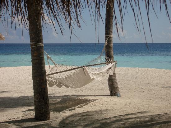 H ngematte fotograf a de rangali island southern ari for Viajes rangali opiniones