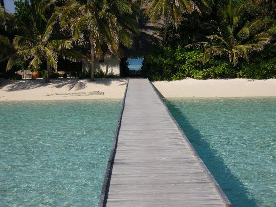 Br cke fotograf a de rangali island southern ari atoll for Viajes rangali opiniones