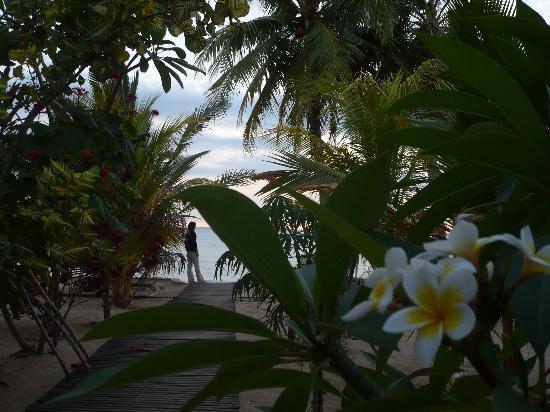 Antafondro, Μαδαγασκάρη: Le jardin de Doany