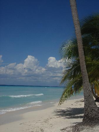 Caribbean: Punta Cana