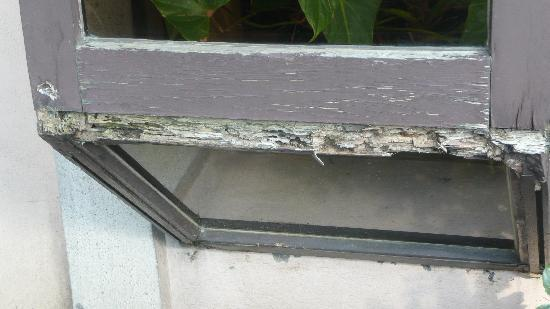 Hotel Central : rotting window frame