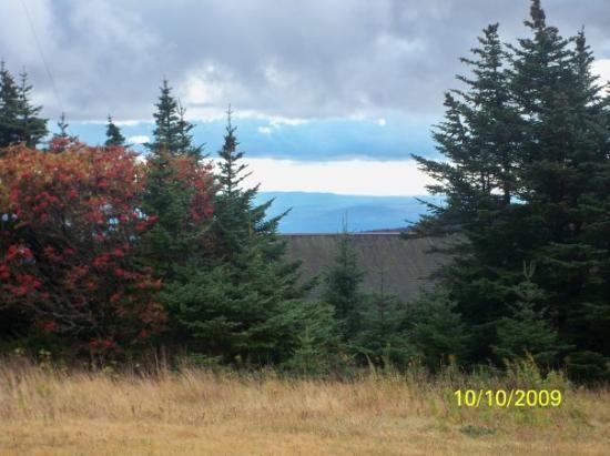 North Adams照片