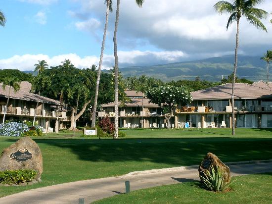 Maui Eldorado: Walking back from the Cabana