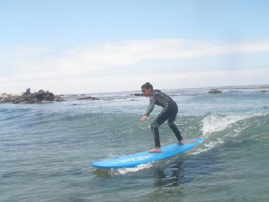 South Bay Surf Lessons: Surfing USA!!!