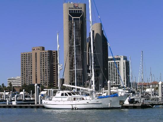 Omni Corpus Christi Hotel: Omni on the right from the Marina