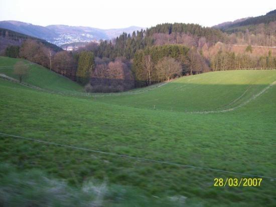 Hagen Photo
