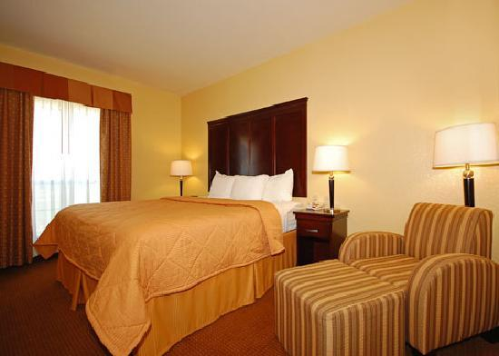 Comfort Inn Near SeaWorld: King