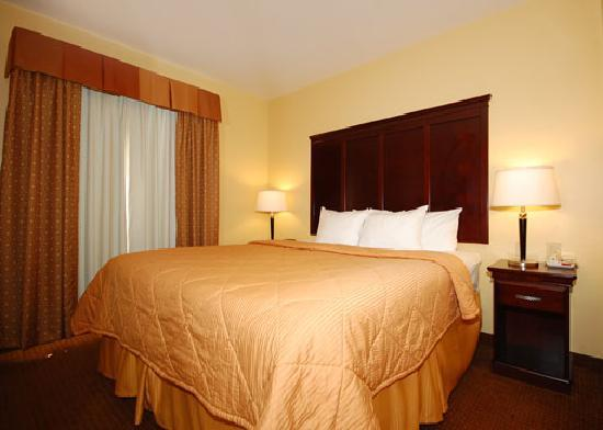 Comfort Inn Near SeaWorld: King Suite