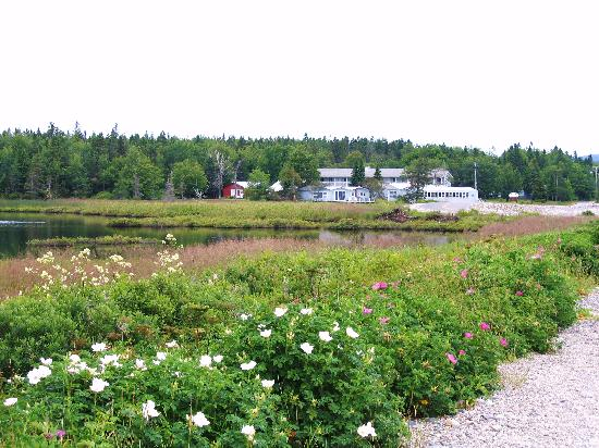 Seawall Motel: Beaver Pond