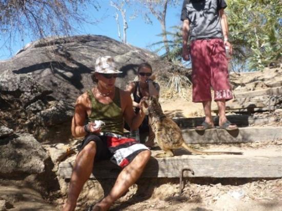Mareeba, Australien: ich liebe diese tiere