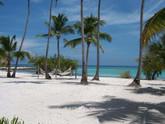 Foto de Punta Cana