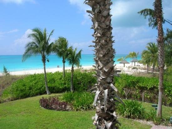 Фотография Royal West Indies Resort