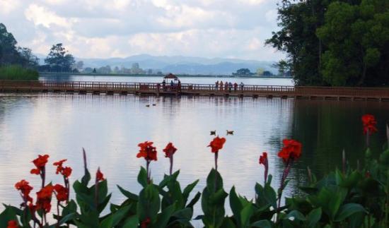 Maymyo Botanical Garden (National Kandawgyi Park): ျပင္ဦးလြင္ - ကန္ေတာ္ႀကီး