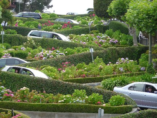 San Francisco, Kalifornien: Looking up Lombard Street